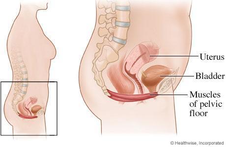 hvordan får jeg større barm blødning efter samleje