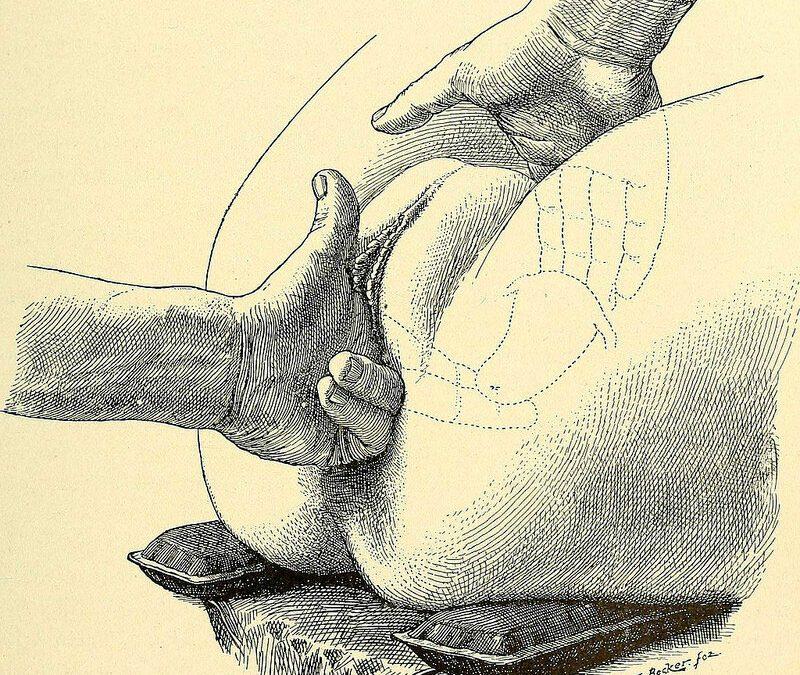 Er det vigtigt at træne selve knibet efter fødsel?